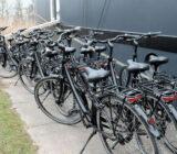 Magnifique III bikes
