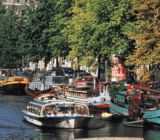 Amsterdam  x