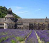 France Provence Camargue Avignon abbaye de Senanque x