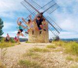 France Provence Camargue roman windmill x
