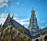 Haarlem St Bavo church x