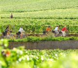 France Burgundy cycling