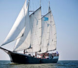 Sailing ship Mare fan Fryslan