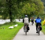 Mosel cyclist